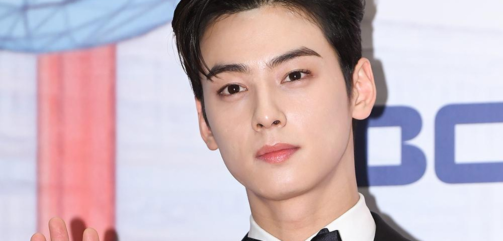 Cha Eun Woo Handsome Tigers